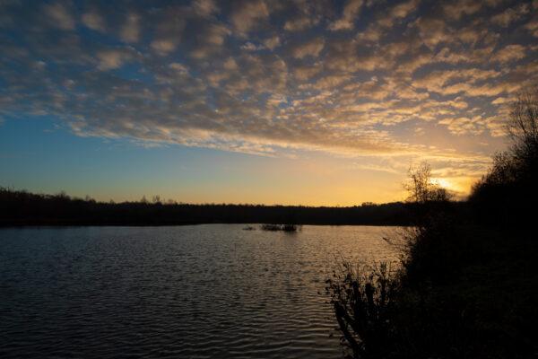 Teich in der Wahner Heide