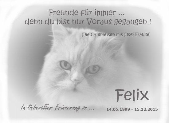 abschied-felix1
